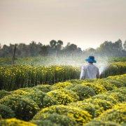 Corporate-Visas-Can-Fix-Seasonal-Farm-Labour-Shortages-XP